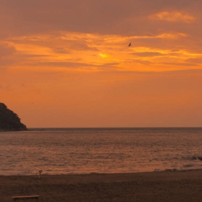 好看的唯美日落风景头像