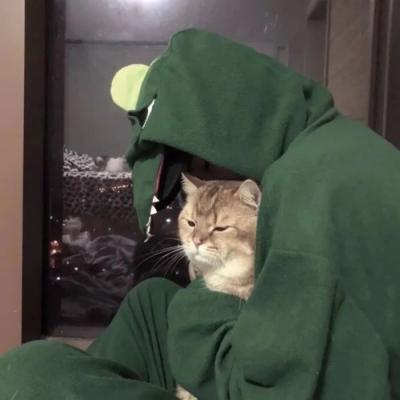 绿色小清新很舒心的真人头像